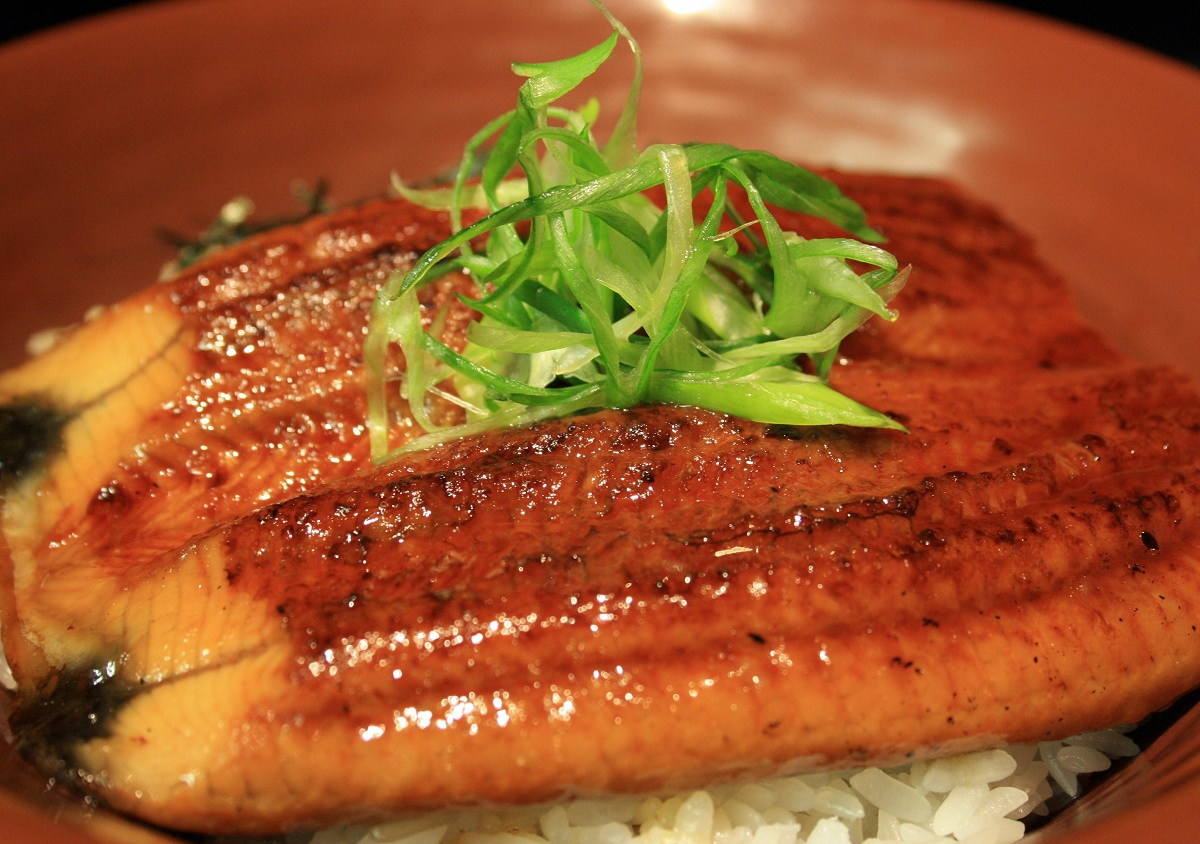 205. Unagi Don