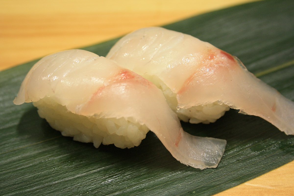 413. Suzuki (Sea Bass) Nigiri